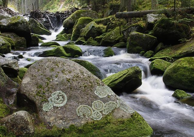 kamenitý potok Kvilda
